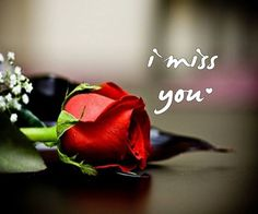 Love Quotes About love Messages Truth Is, Always I Love You Forever I Miss You Quotes, Missing You Quotes, Love Life Quotes, Love Yourself Quotes, Life Sayings, Missing You Love, I Love You Forever, My Love, Miss You Images