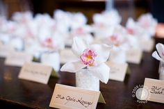 Place cards with individual orchids.