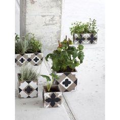 Petite jardinière de fleur carreaux de ciment noirs et blancs