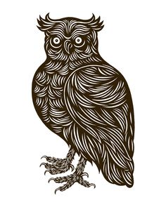 Dapper Owl, by Don Carney | 20x200