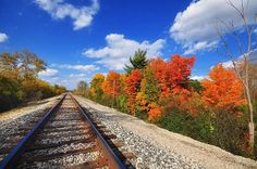 Fall colors near Northville MI | Flickr - Photo Sharing!