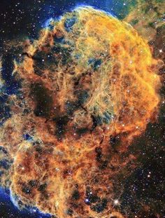 Jellyfish Nebula is a Galactic supernova remnant (SNR) in the constellation Gemini. On the plane of the sky, it is located near the star Eta Geminorum. Its distance is roughly 5,000 light years from Earth. Credit: APOD / NASA
