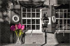 Sabine Wagner - Tulpen aus Amsterdam