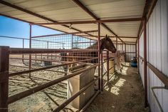 Barn Stalls, Horse Stalls, Small Horse Barns, Barn Layout, Horse Paddock, Horse Barn Designs, Horse Shelter, Horse Barn Plans, Run In Shed