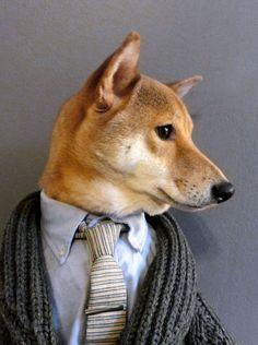 Menswear Dog • How To Wear A Chunky Shawl Collar Cardigan Shawl