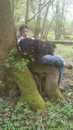 Sitz Baum
