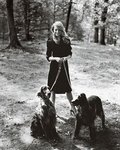 {Gwyneth Paltrow lovely as always} beautiful photograph with Irish Setters