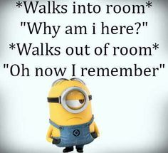 Minion: You forget much?