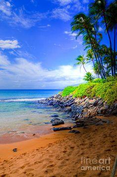 Napili Bay Maui Print by Kelly Wade