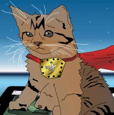 Super hero #kitten