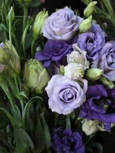 Lisianthus - gorgeous www.buyflower.in www.inidaflower.co.in www.buyflower.co.in +919582148141 We have beautiful flowers & Gifts which are sending to your friends, relatives and family members. you can also send soft toys, delicious cakes, chocolates Send Flowers to Delhi & All Over World through Online Florist Delhi.