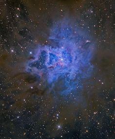 A 1.300 años-luz de distancia, en la constelación de Cefeo, se encuentra la Nebulosa Iris. Está iluminada por una joven estrella en el interior de la misma. #astronomia #ciencia
