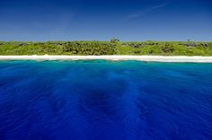 henderson island, which lies in the eastern South Pacific, is one of the few atolls in the world whose ecology has been practically untouched by a human presence. Its isolated location provides the ideal context for studying the dynamics of insular evolution and natural selection it is particularly notable for the 10 plants and four land birds that are endemic to the island.