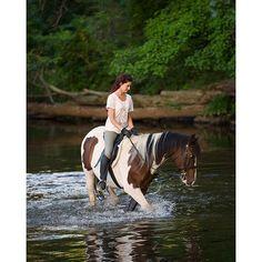 @evabonn just going for a swim #farm #farmlife #f4n #horse #english #natgeo #canon #canonusa #TeamCanon #500px #eastcoast #jersey #jerseygirl