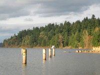 Seward Park — Washington Trails Association, Seattle