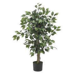 Wholesale 3 Ft Ficus Silk Tree, [Decor, Silk Flowers] * Click image to review more details.