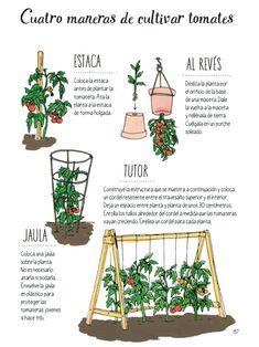 Eco Garden, Home Vegetable Garden, Organic Gardening, Gardening Tips, Green Life, Winter Garden, Permaculture, Garden Planning, Cactus Plants