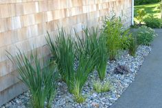 River Rock Garden | simple river rock foundation plating, 724x485 in 105.6KB