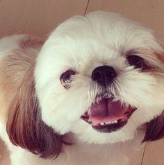 Bet I made ya smile...I did didn't I?!? :-)