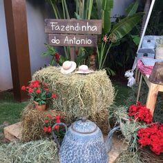 Plaquinha de madeira para fincar na grama com 2 mensagens. Essa foi para a Fazendinha do Antonio, festa infantil de 1 aninho.