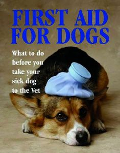 First Aid for Dogs (Pet Care) « Library User Group-
