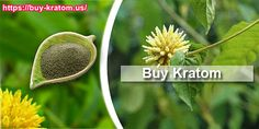 BUY KRATOM - FREE SHIPPING FROM OUR USA WAREHOUSE