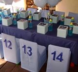 Blue Bulls Rugby Party - jersey numbers on the back of plain white chair covers, very cool idea for a birthday party with 15 guests. White Chair Covers, Rugby, Paper Shopping Bag, Party Favors, Party Themes, Make It Yourself, Cool Stuff, Birthday, Kids