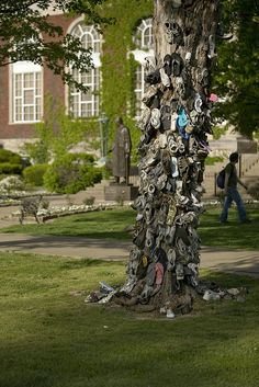 The famous Shoe Tree At Murray State... where couples who met at MSU stake their shoes when they get married - so interesting! Has anyone seen this?
