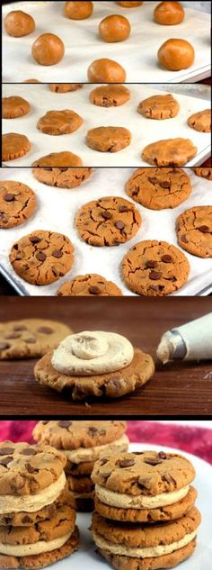 Flourless Peanut Butter Chocolate Chip Cookie Sandwiches, with Peanut Butter Cinnamon Cream.