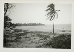 View looking out over Mindil beach and the water at Darwin, with a Bonds Tours bus parked nearby  SA Ref No B70782/53 Photographer Kevin Harris