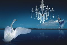 #creative #lighting #design #indoor