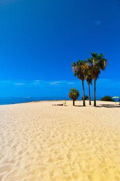 Sombrero Beach, Marathon Key, Florida Keys, Florida - Photo by Blaine Harrington III