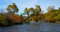 The Tuul river in the Gorkhi-Terelj National Park is a route followed by Stone Horse Expeditions on its horseback riding tours. http://www.stonehorsemongolia.com