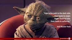 Fear is the path to the dark side. Fear leads to anger. Anger leads to hate. Hate leads to suffering.  Jedi Master Yoda