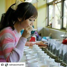 Bonne dégustation ! #Repost @ratnasomantri with @repostapp  Always learning something new. It takes a lifetime to learn about tea.  #royalalbert #TeaTrip #TeaTasting #indonesiantea #liki
