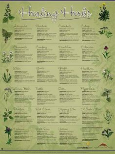 Healing herb chart