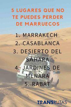 No debes quedarte con las ganas de visitar Marruecos. Distintos circuitos y ciudades de salida #ConTransrutas #Marruecos #Ofertas #NorteDeAfrica Marrakech, Great Places, Beautiful Places, Eurotrip, Casablanca, Morocco, Allah, Trips, Places To Visit