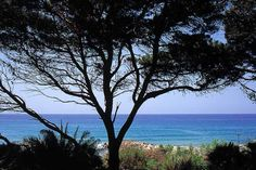 Palazzo Belmonte - Photo Gallery - 4 star hotel in Santa Maria di Castellabate