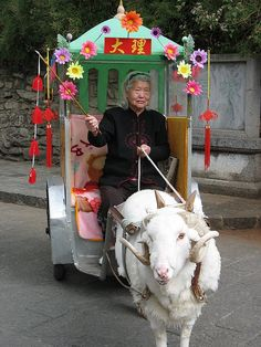 Chinese Crone and Goat