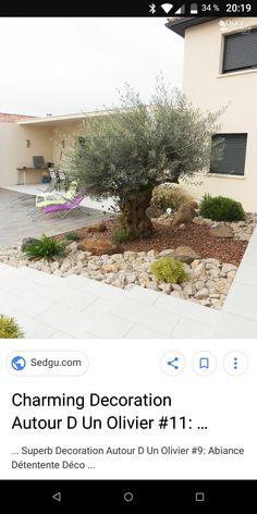 Design Jardin, Modern Garden Design, Swimming Pool Designs, Small Patio, Permaculture, Outdoor Gardens, Home And Garden, Backyard, Landscape