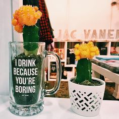 Fun JV fact: beer steins double as cactus planting pots in case of emergencies. Tag your favorite drinker and get this on JACVANEK.COM now! ✨