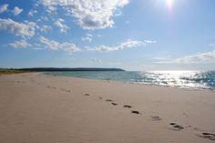 Our fav beach in Michigan