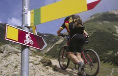 #mountainbike #trentino #bikeoverthehillsand #bikeeverywhere #welovebike