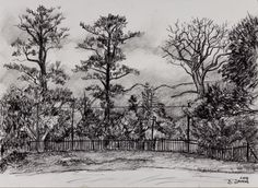 Behind the River Café - Charcoal on paper. 297 x 210 mm.  I drew this a while back when I was working at the wine shop on Constantia Uitsig. This was the view behind the cafe looking down towards the Muizenberg mountains and the remains of Tokai forest. The landscape of my childhood is always changing.