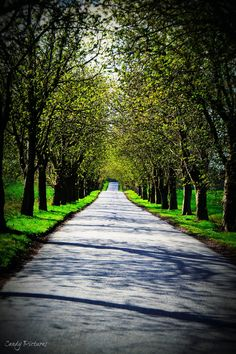The Never Ending Road by Candy Pictures on 500px