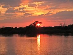 At the Okavango. A picture for Miss Namibia Best Greetings. Celestial, Explore, Sunset, Pictures, Outdoor, Photos, Outdoors, Sunsets, Outdoor Games