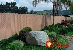 """Chain Link Fence with """"Factory Inserted Slats""""™ Chain Link Fence Privacy, Welded Wire Fence, Fence Slats, Easy Fence, Fencing Companies, Types Of Fences, Fence Planters, Concrete Fence, Backyard Privacy"""