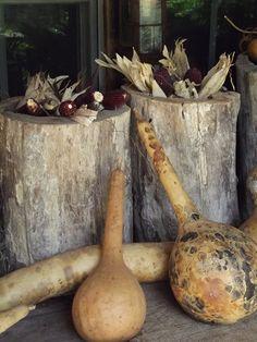 Hornbeams & Gourds on porch