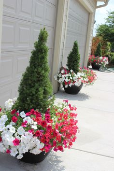 More favorite planters from my neighborhood (10+)! - Momcrieff
