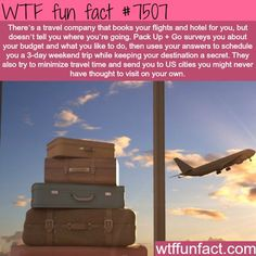 Pack Up + Go - WTF FUN FACTS It's great; everyone should do this!